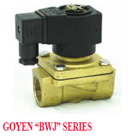 GOYEN SOLENOID VALVE QWJ SERIES NORMALLY CLOSED