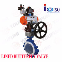 YOUFUMI LUG TYPE LINED BUTTERFLY VALVE