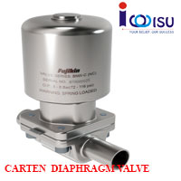 CARTEN BNW SERIES WEIR DIAPHRAGM VALVE
