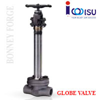 CRYOGENIC GLOBE VALVES 1500LB FULL PORT