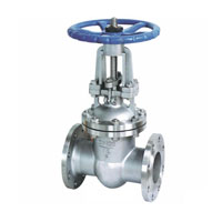 GATE VALVE Z41W-16P STAINLESS STEEL