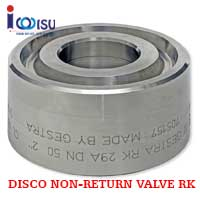 GESTRA FOR SPECIAL APPLICATIONS CHECK VALVE BB