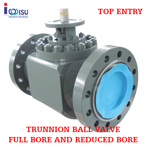 BONNEY FORGE FULL BORE TRUNNION TOP ENTRY