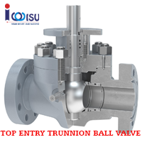 TOP ENTRY REDUCED TRUNNION BALL VALVES CL600