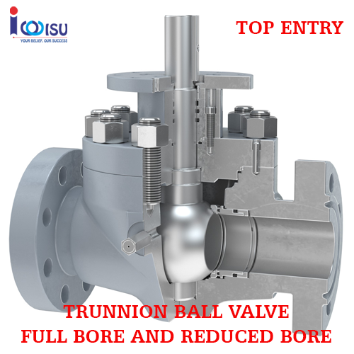 TRUNNION BALL VALVE TOP ENTRY