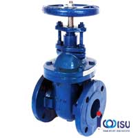 FLANGE GATE VALVE CAST IRON RISING STEM ANSI 250
