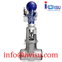 EQUIWEDGE MAIN FEEDWATER ISOLATION VALVE