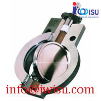 HIGH PERFORMANCE BUTTERFLY VALVES - BIG MAX BX2001
